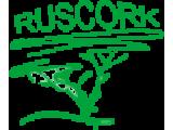Клеевая напольная пробка Ruscork