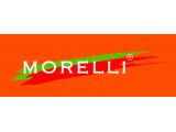 Врезные петли Morelli