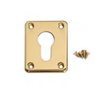 Накладка декоративная Apecs DP-C-01-G золото