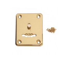 Накладка декоративная Apecs DP-S-01-G-shutter золото