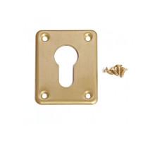 Накладка декоративная Apecs DP-C-01-GM матовое золото